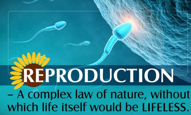 TOPIC 3 : REPRODUCTION (I) ~ BIOLOGY FORM 6
