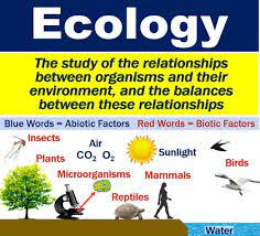 ECOLOGY ~ BIOLOGY FORM 6